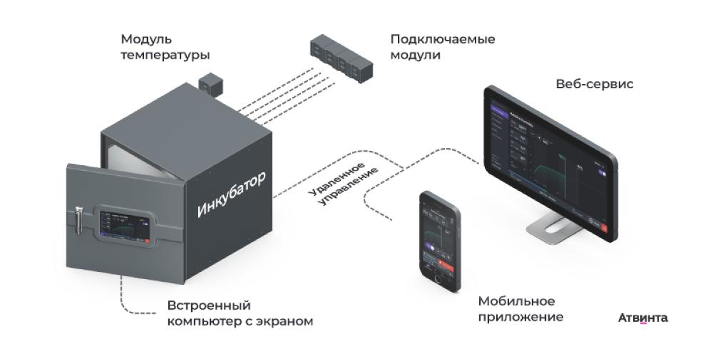 IoT-софт, веб-портал и мобильное приложение для медтех-стартапа