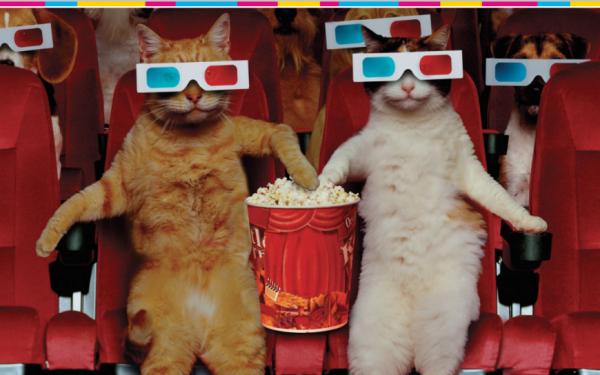 В этой нише вы не работали: привести в онлайн-кинотеатр публику с «особенным» зрением